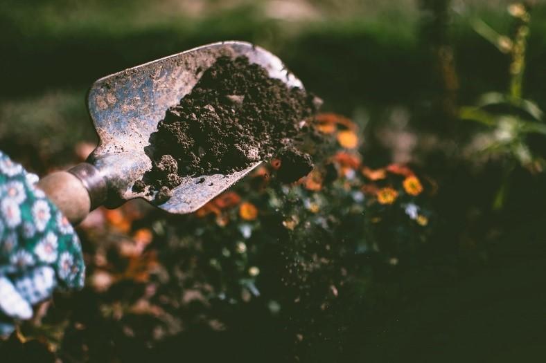 Digging in the soil-1st Abundant Garden